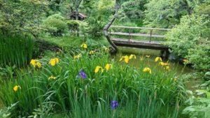 春の百草園まつり